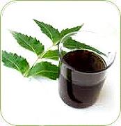 neem oil uses